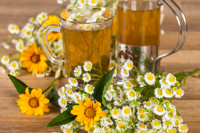 Chamomile For Pterygium