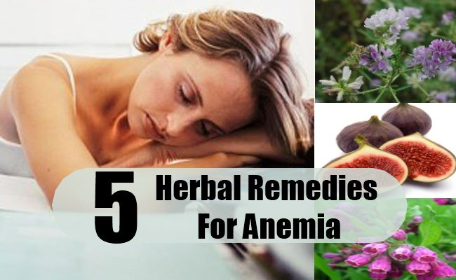 Herbal-Remedies-For-Anemia