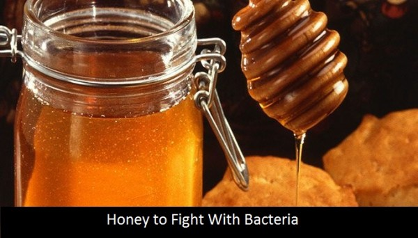honey to fight with bacteria