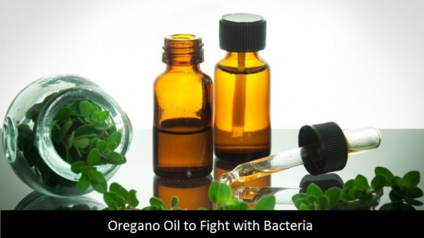 oregano oil to fight with bacteria